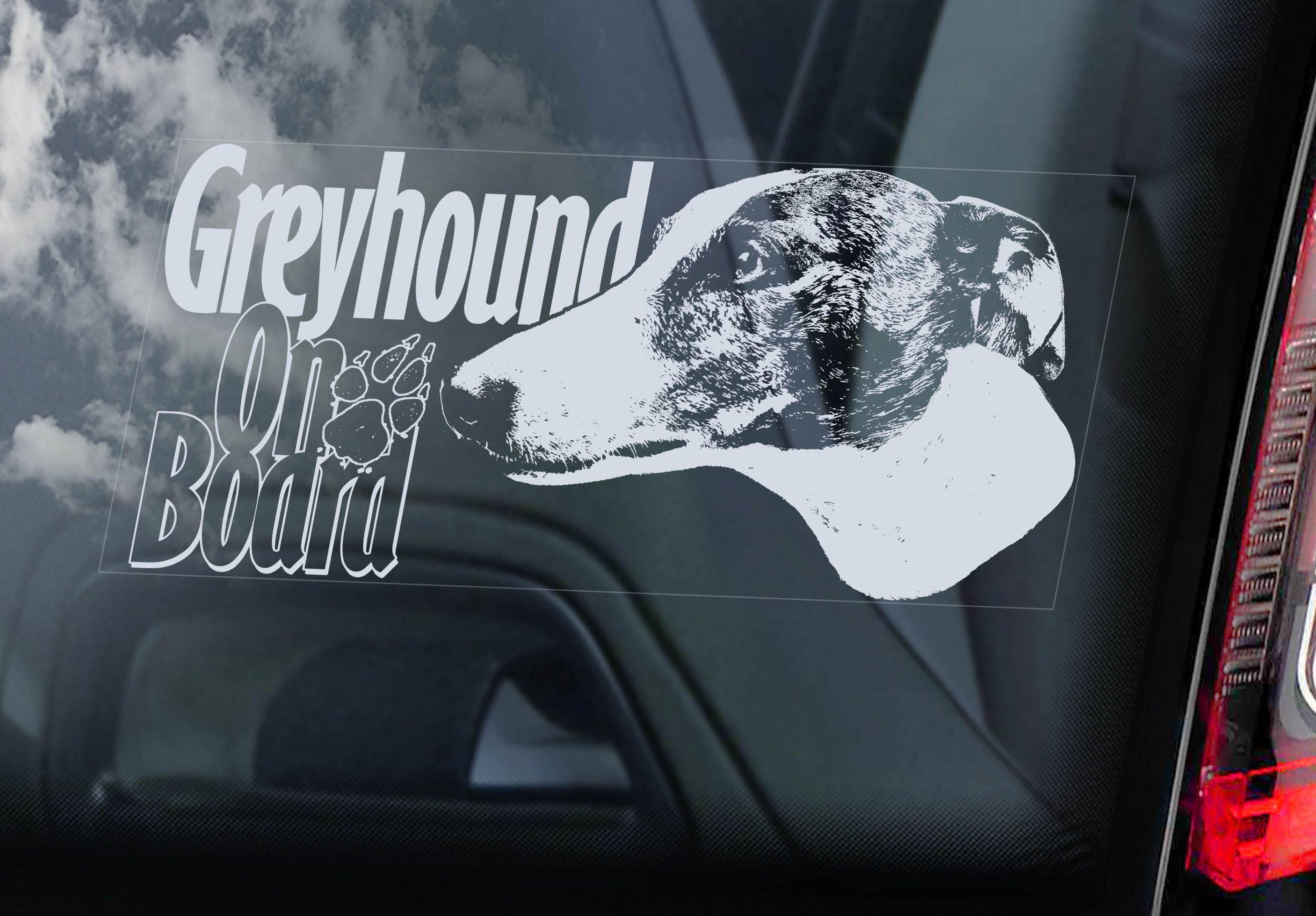 Fsj Greyhound
